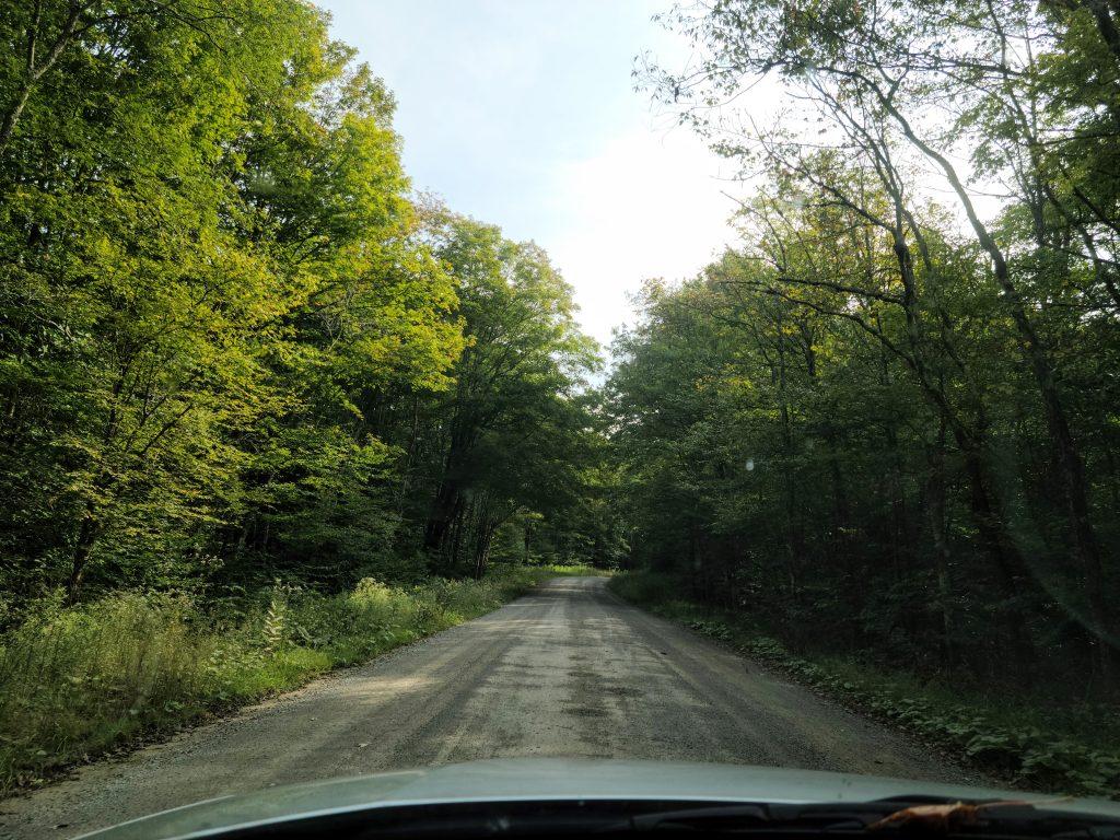 Driving on Bumpy Roads